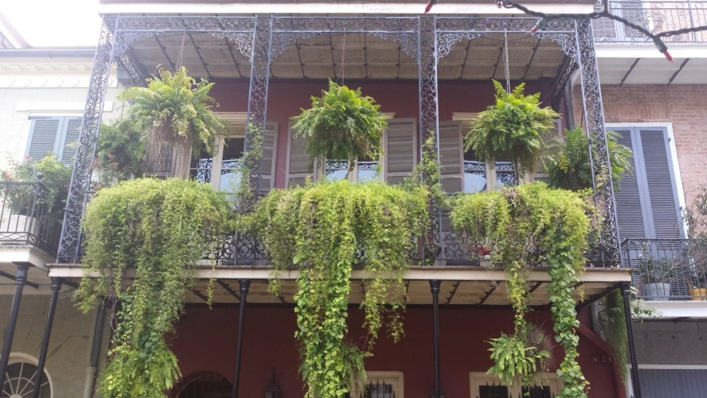 The Backpacking Housewife New Orleans floral balcony